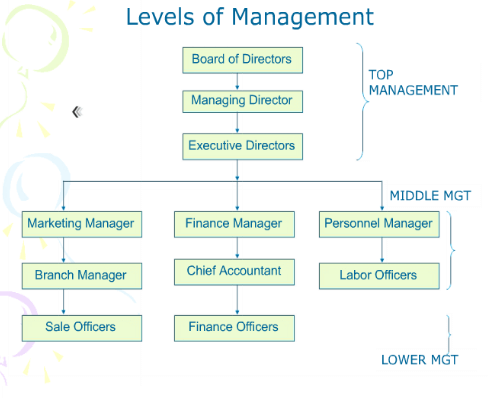 level of management